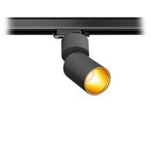 TR SPY N BG 10W 503lm